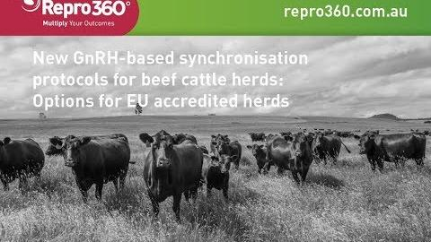 New GnRH based synchronisation protocols for beef cattle herds: Options for EU accredited herds