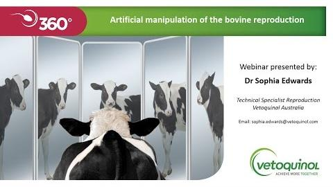 Webinar 3 Beef bull measuring and miitgating failure